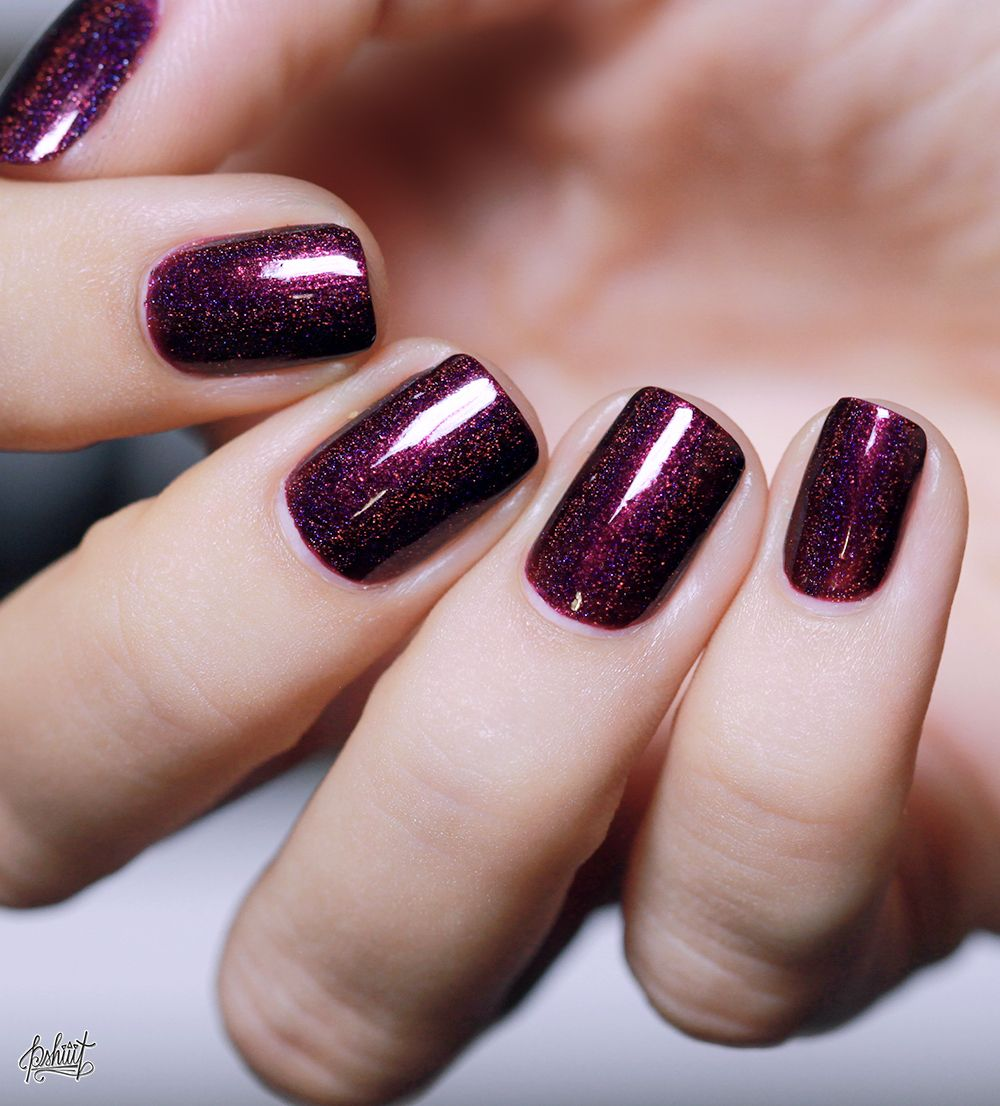 ILNP Fall Collection // Black Orchid, Fall Semester et Homecoming ...