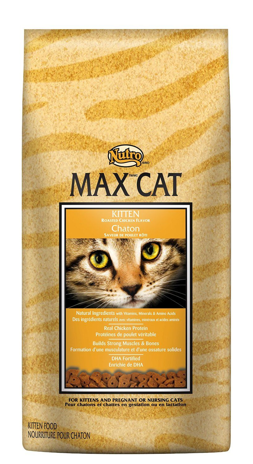 Nutro Max Cat Kitten Roasted Chicken Flavor Dry Cat Food 16 Pounds Cat Food Dry Cat Food Kitten Food Chicken Cat