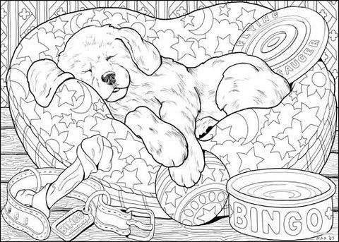 Puppy Line Art