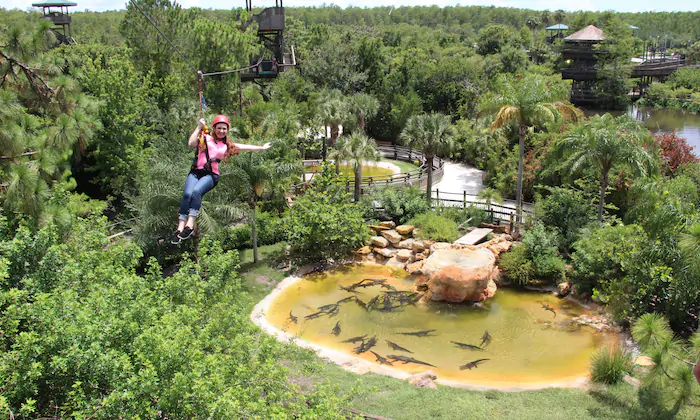 Gatorland With Images Ziplining Orlando Travel Outdoors