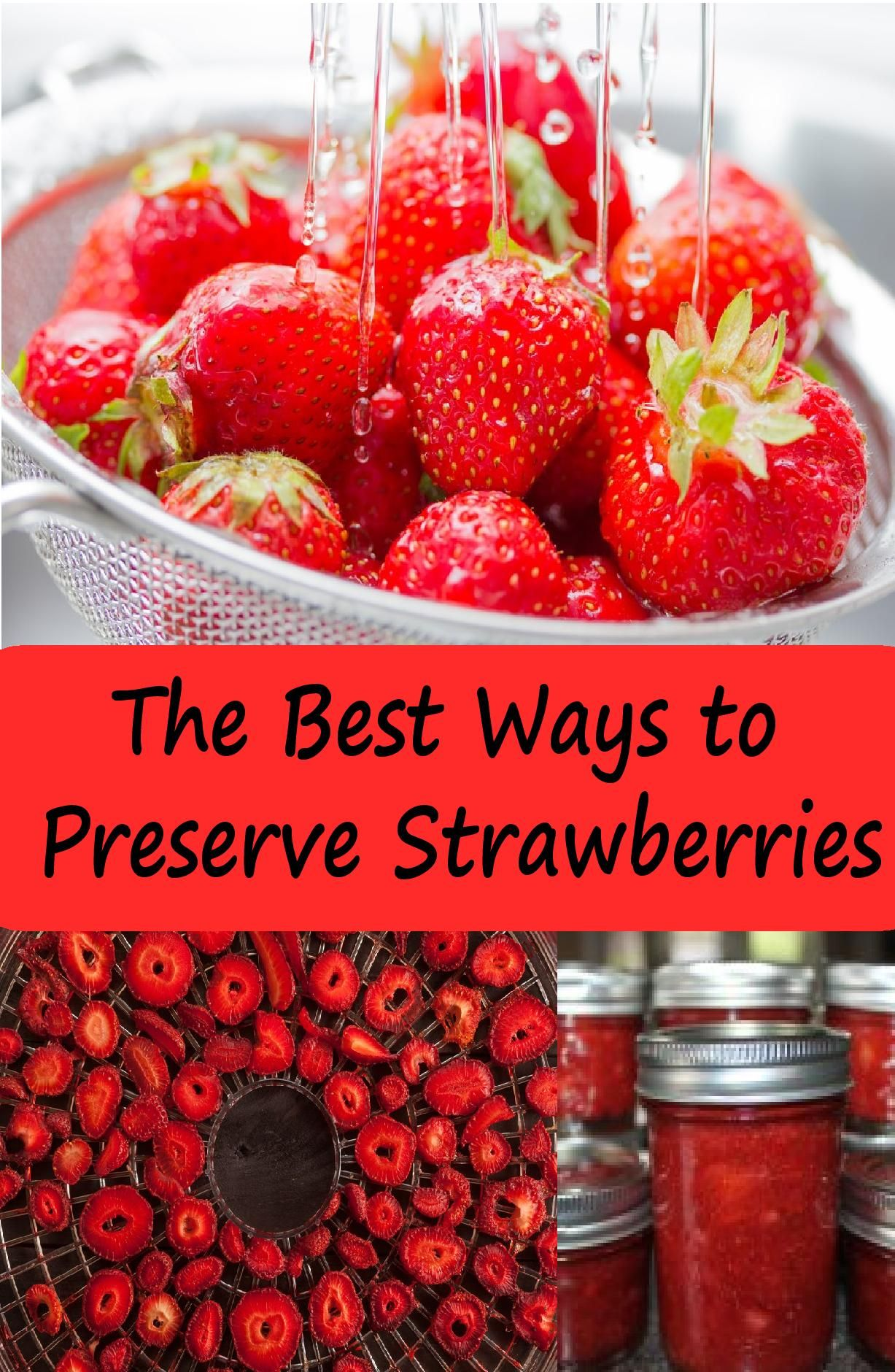 How to Store Strawberries at Home: An Overview of Ways and Recommendations