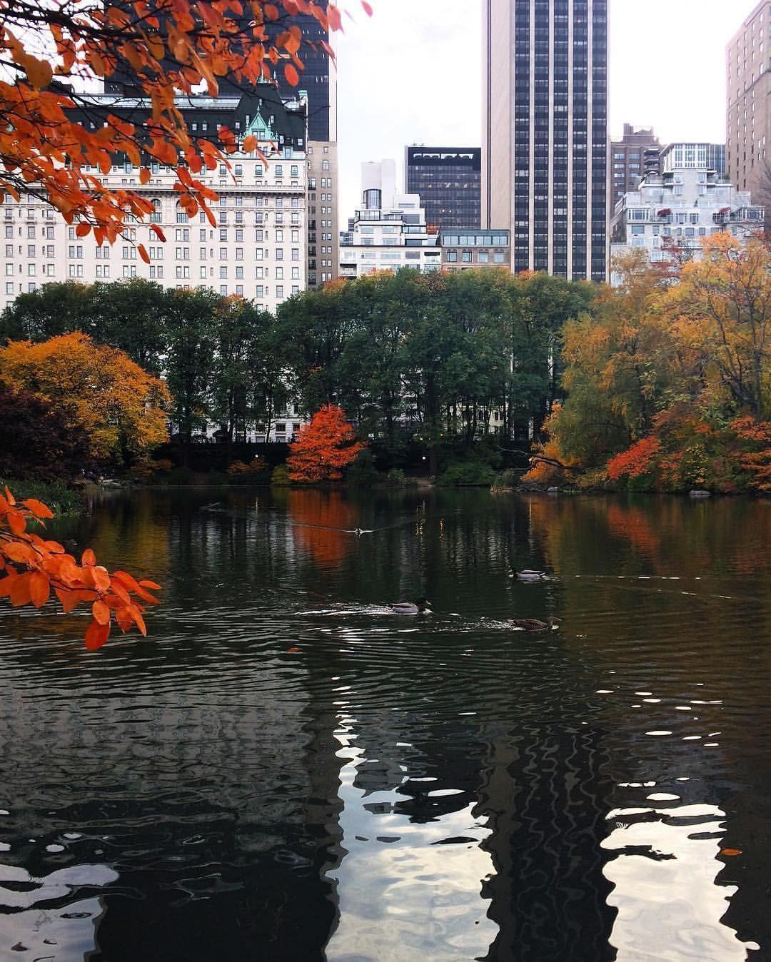 Αποτέλεσμα εικόνας για autumn manhattan instagram