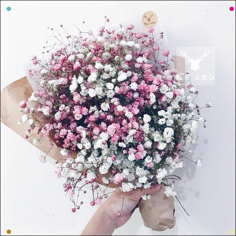Baby S Breath Bouquets Flowers Bouquet Gift Buckwheat Flower Babys Breath Flowers
