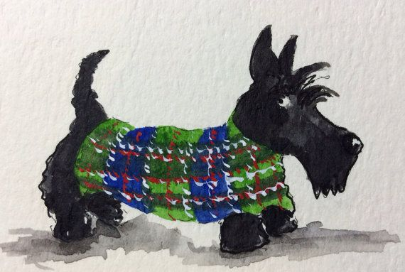 Male Dog Belly Band Diaper Boy Puppy Panties Pet Doggie Wrap Pants Plaid Scottish Terrier  On Cotton Flannel Custom Sizes To 30 Inches