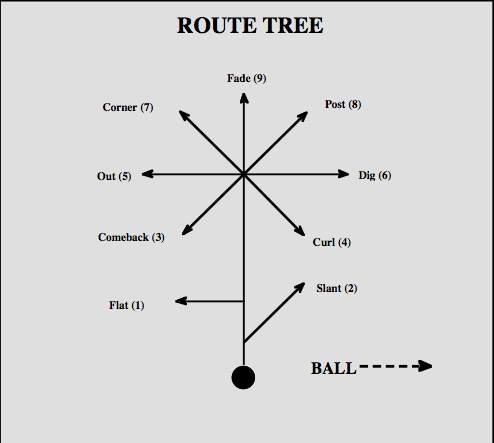 Image Result For Nfl Wr Route Tree Flag Football Plays Flag