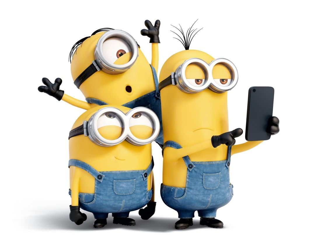 17 Best Images About Minions On Pinterest Iphone 5 Wallpaper