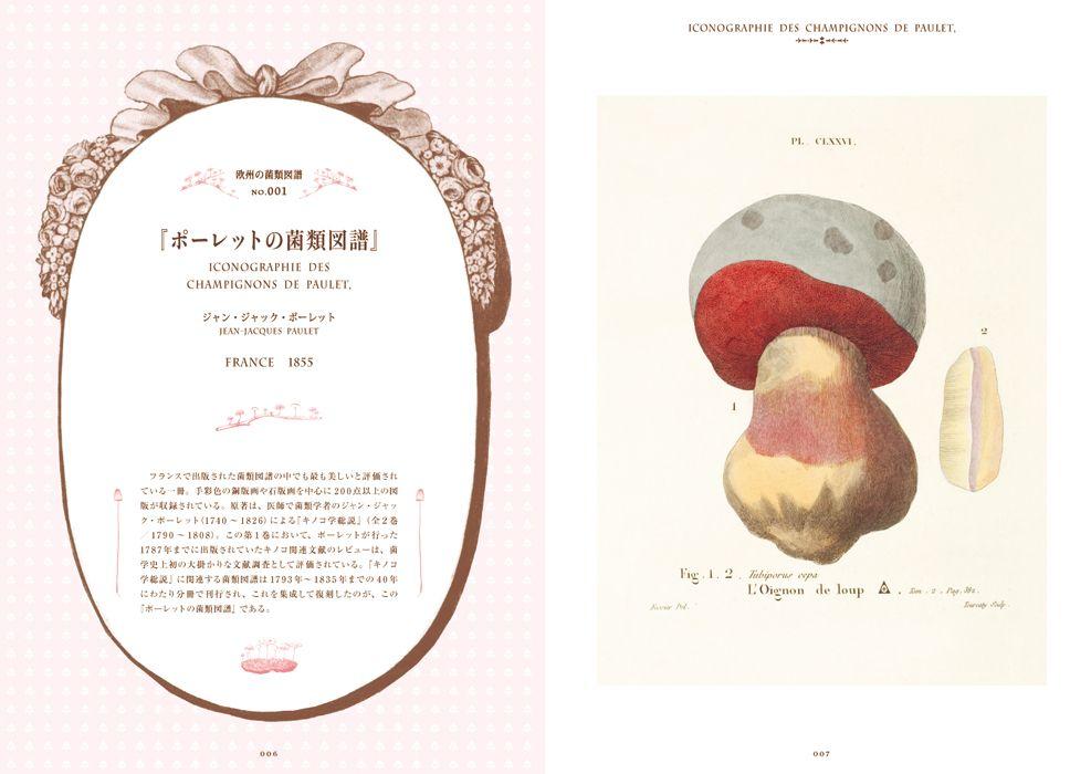 Mushroom botanical book