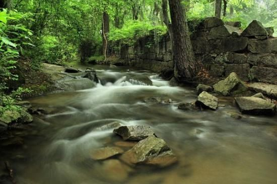 Riverbanks zoo columbia the saluda mill ruins nothin could be finer south carolina for Columbia at south river gardens