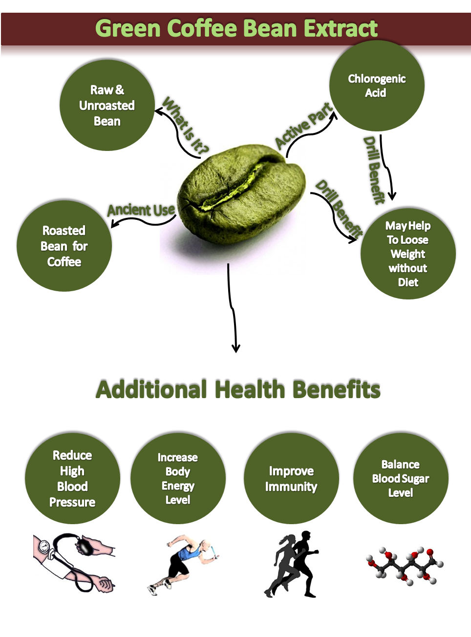 Green Coffee Bean Extract Visual Ly Green Coffee Green Coffee Bean Coffee Beans