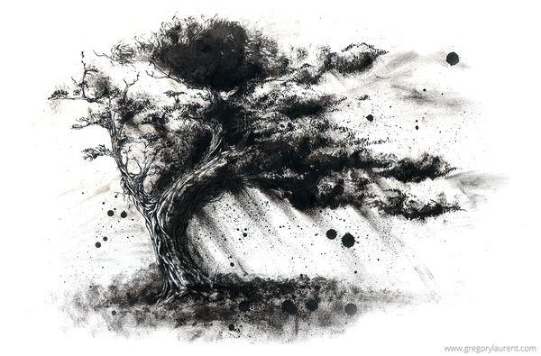 dessin l 39 encre de chine d 39 un arbre en noir et blanc illustration fine art pinterest. Black Bedroom Furniture Sets. Home Design Ideas