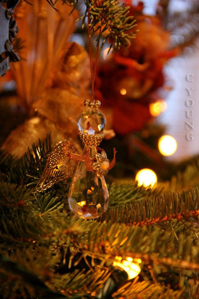 Christmas tree lights and angels - C YOUNG Photography Ellen\u0027s