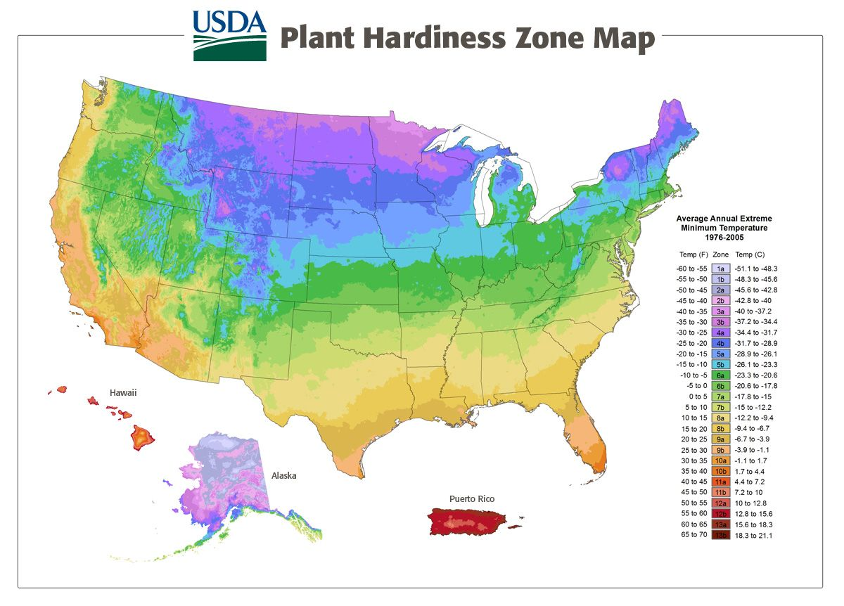 What Is Your Usda Plant Hardiness Zone