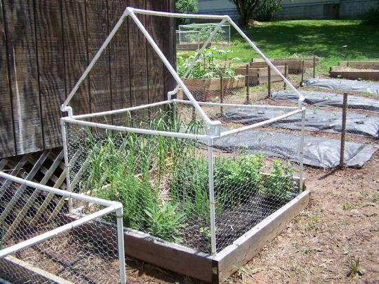 Building Garden Fence Boxes With Images Garden Boxes Garden