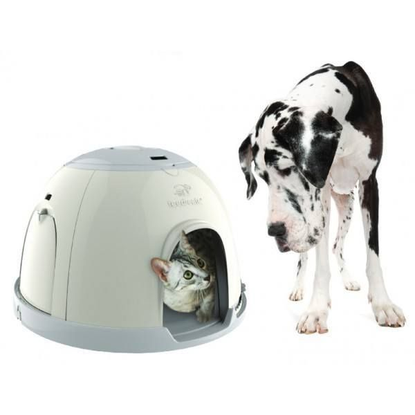 The Feedsafe Feeding Station For Feeding Individual Diets Petsweekly Petsgeekly Pettech Pets Multi Pet Pet Feeder Small Pets