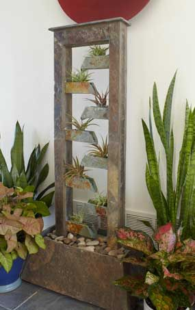 Indoor Plant Projects Add Beauty Plant Projects Indoor Plants