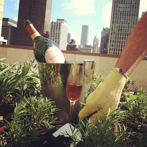 Rooftop Garden The Four Seasons Chicago Tito's vodka