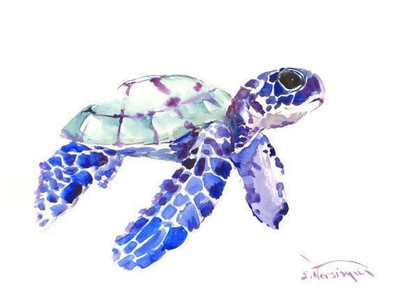 Blue Baby Sea Turtle Painting 12 X 9 In Sea Animal Art Animal