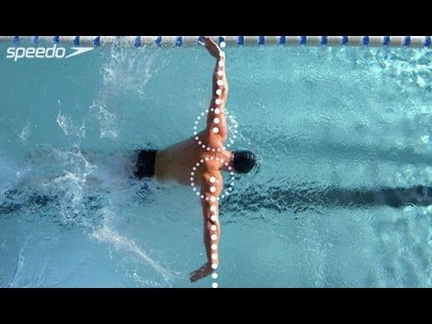 da50d6f6266d2 Master the Butterfly, the most notoriously difficult swimming stroke, with  all four of Speedo's superb training videos in one.