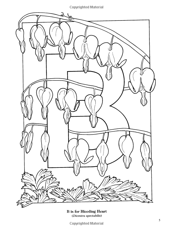 Garden Flowers Alphabet Coloring Book Ruth Soffer Coloring Books For Adults 9780486435954 Boo Flower Alphabet Designs Coloring Books Mandala Coloring Books