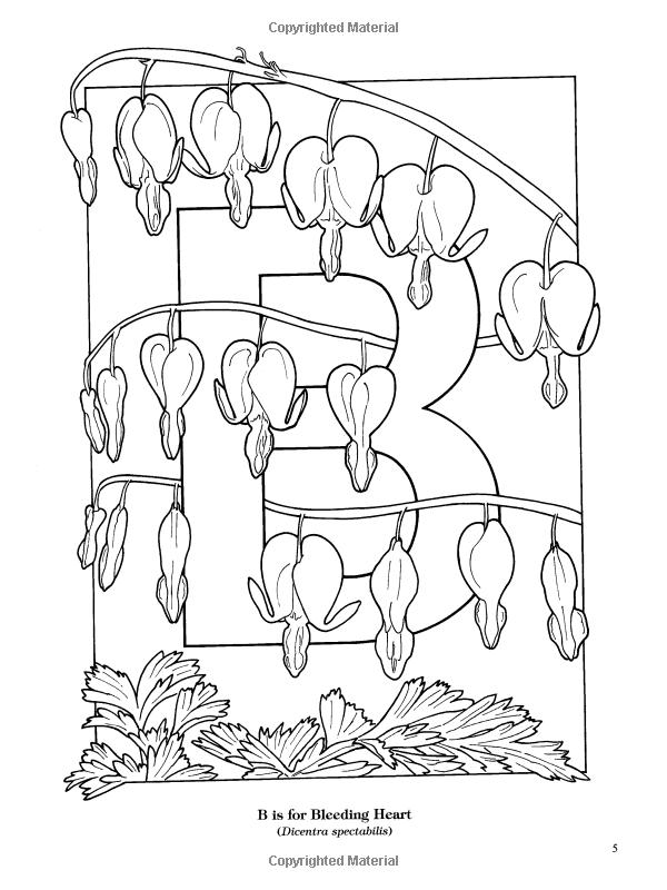 Garden Flowers Alphabet Coloring Book Ruth Soffer Coloring Books For Adults 9780486435954 Boo Flower Alphabet Mandala Coloring Books Designs Coloring Books