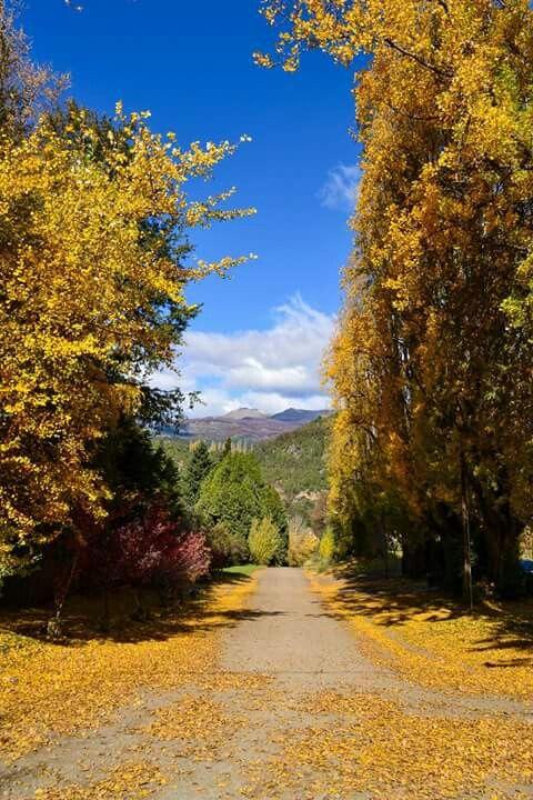 Otoño..Patagonia Argentina