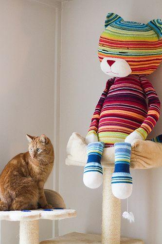 Photo of KarinvdB & # 39; s Amineko 2013 Temperatur Cat