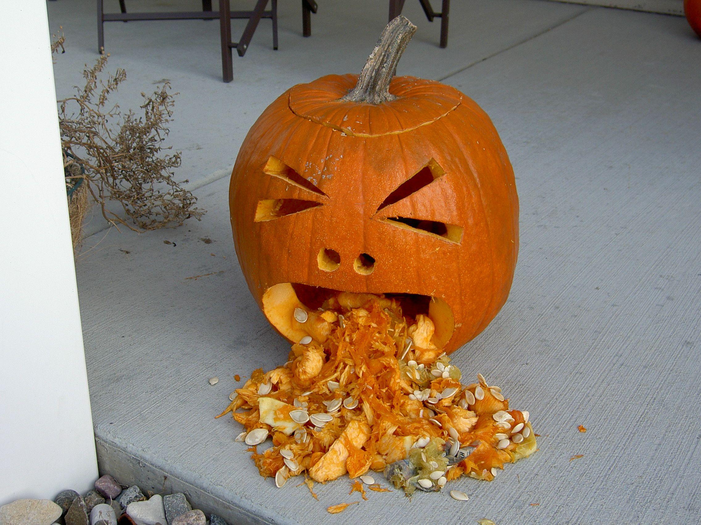 Explore Sick, Pumpkin Carvings, And More
