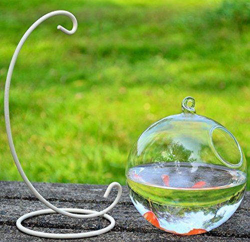 Hanging Glass Fish Tank Transparent Spherical Fish Bowl Creative