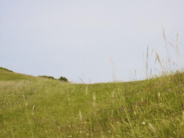 Danish landscape. Visit http://www.facebook.com/ECCORomania