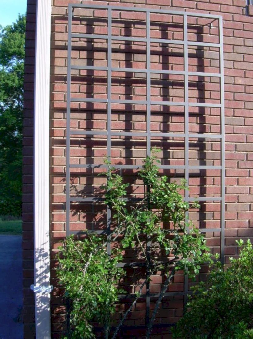 Chic and Simple Garden Trellis That You Can do It Yourself
