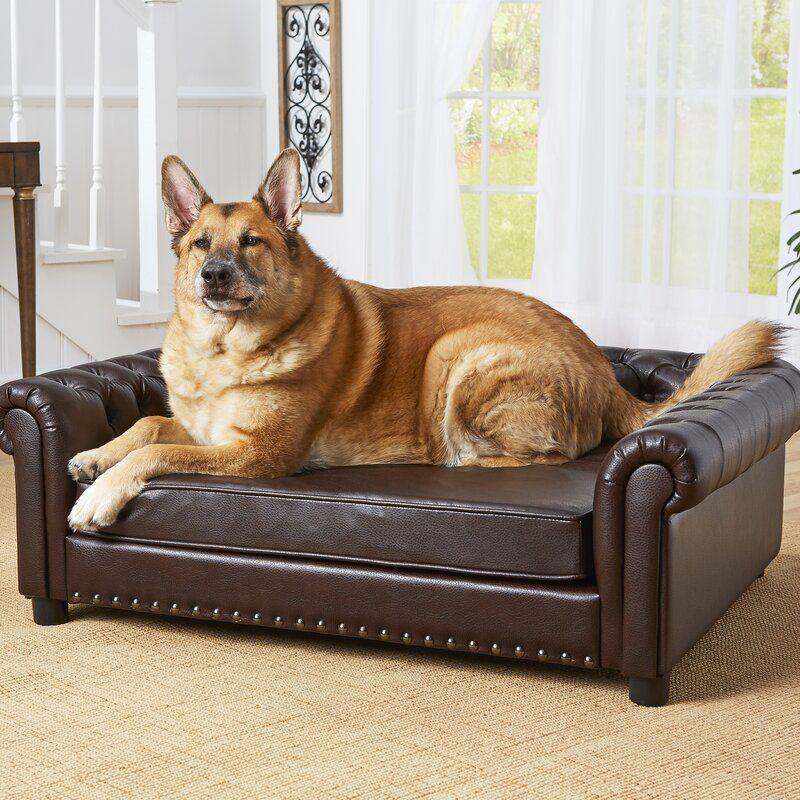 Hinojosa Dog Sofa in 2020 Pet sofa, Dog house air