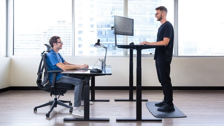 Standing Desks Electric Adjustable Height Stand Up Desk Affordable Standing Desk Best Standing Desk Minimalist Office Desk