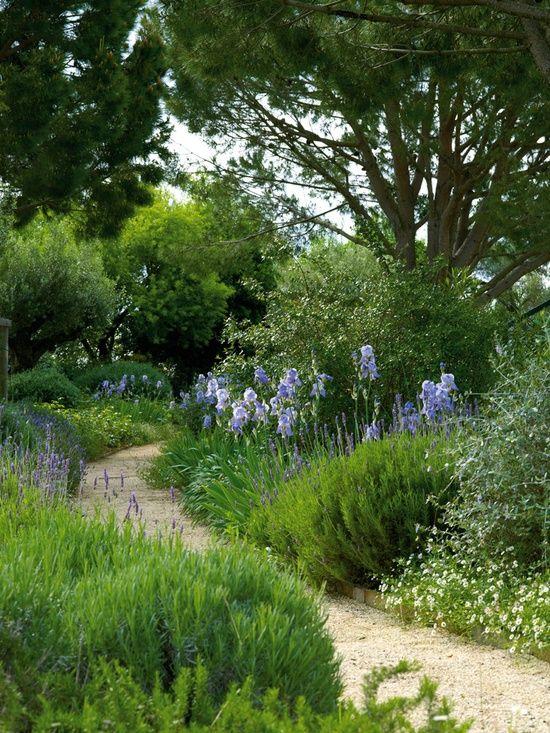 meandering with highlights of blue st jo 39 s garden pinterest les. Black Bedroom Furniture Sets. Home Design Ideas