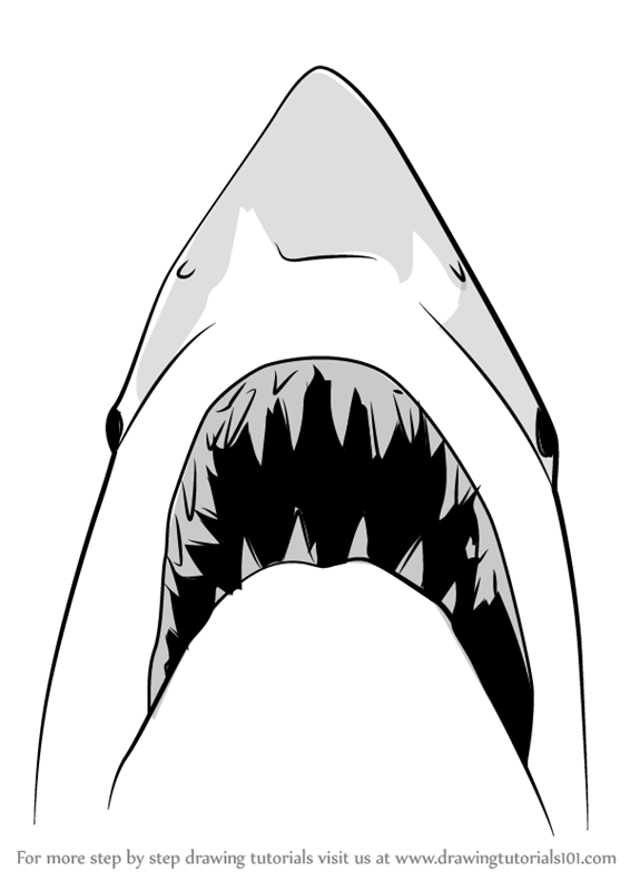 Learn How to Draw Jaws Shark (Other Animals) Step by Step
