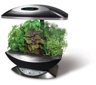 As Seen On Tv The Aerogarden Review Herbs Indoors Herb 640 x 480