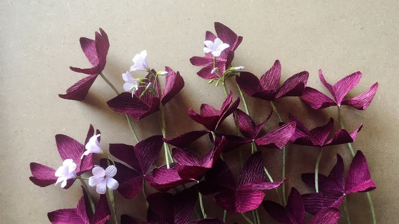 Abc Tv How To Make Purple Shamrock Paper Flower From Crepe Paper
