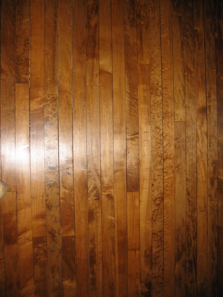Maple floor with a dark stain love it good discussion for Hardwood floors popping