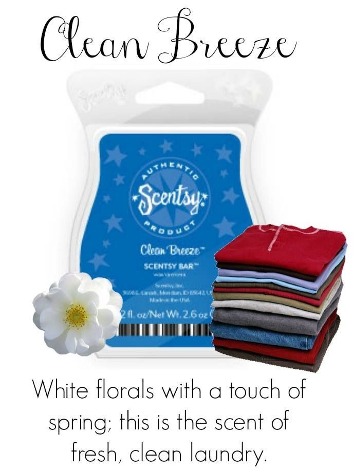 Clean Breeze Scentsy Bar Purchase At Www Scentwithlove Us Scentsy Spa Decor Fragrance Scent Candle Scentsy Scentsy Fragrance Scentsy Bars