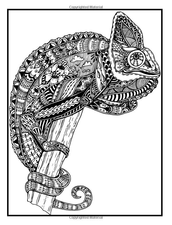 1010+ Coloring Book Mandala Animals Free