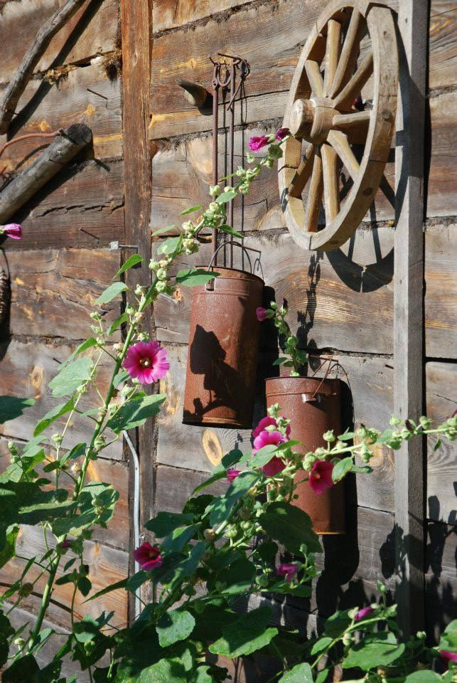 A pretty scene - I think these are hollyhocks. I'd like to plant some this year, and nasturtiums as well...