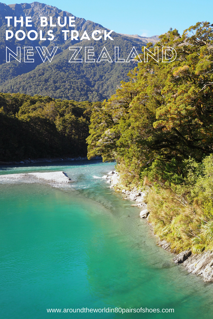 The Blue Pools Track, New Zealand | New Zealand Travel ...