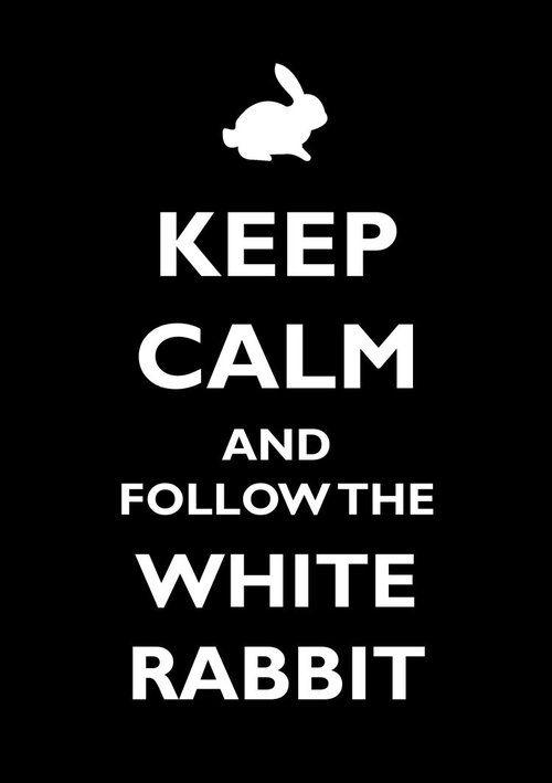 white rabbit alice in wonderland follow the white rabbit