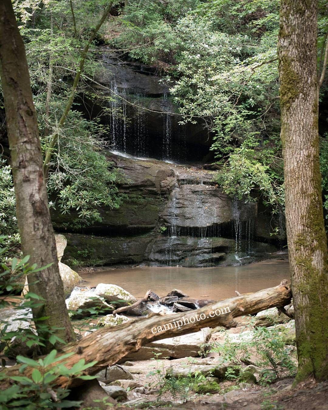 Moore Cove Waterfall | Visit NC Smokies |Small Cove Waterfall