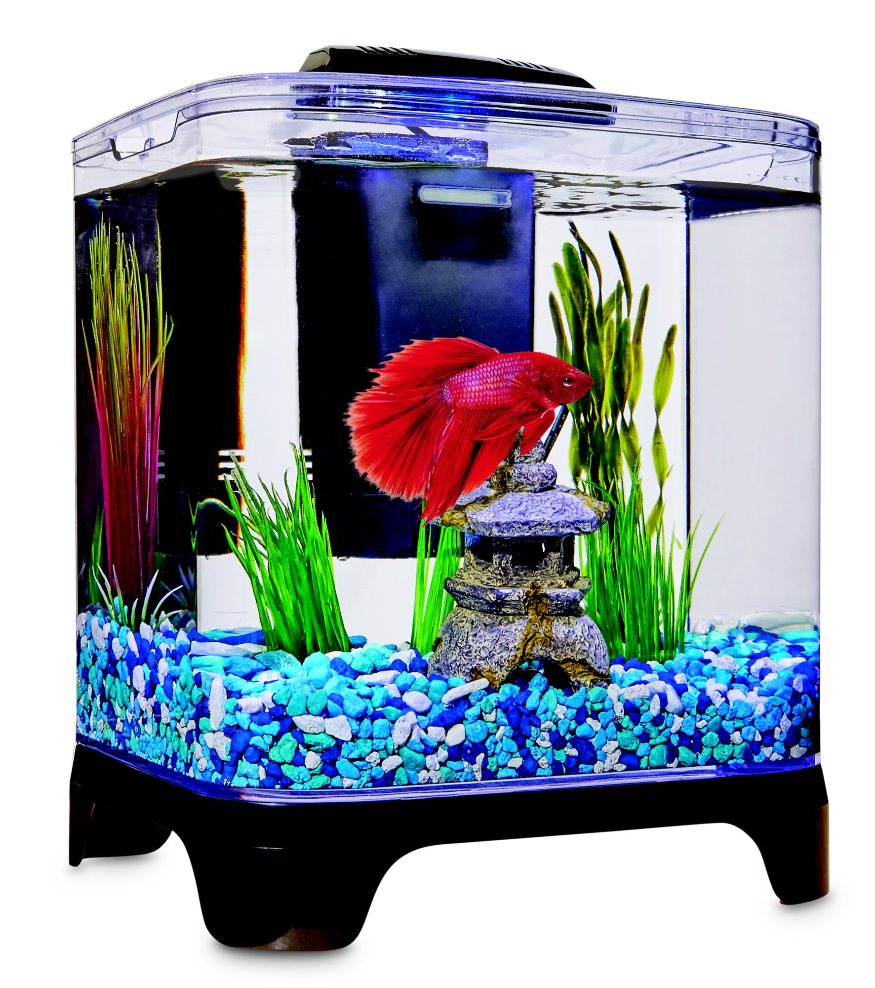 Imagitarium Betta Desktop Kit 1 4 Gal Petco Diy Fish Tank Betta Betta Fish Tank