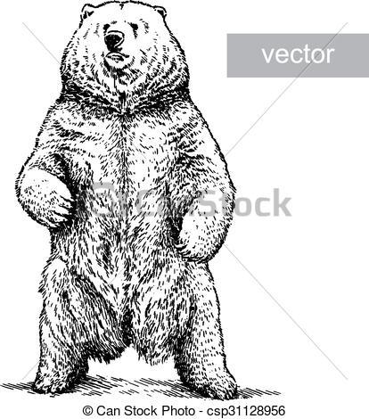 Engrave Bear Illustration Vector Stock Illustration Royalty Free Illustrations Stock Clip Art Icon Stock Clipart Bear Illustration Illustration Linear Art