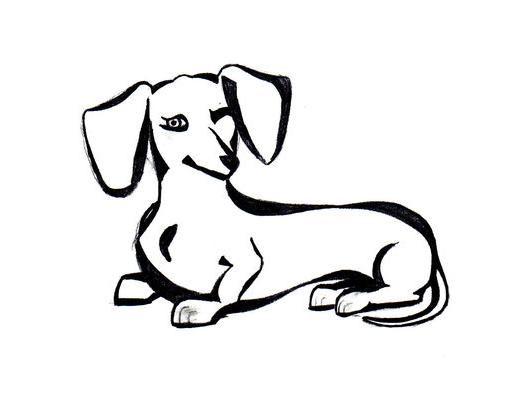 Easy Line Drawings Of Animals : Dachshund clube u2026 pinteresu2026