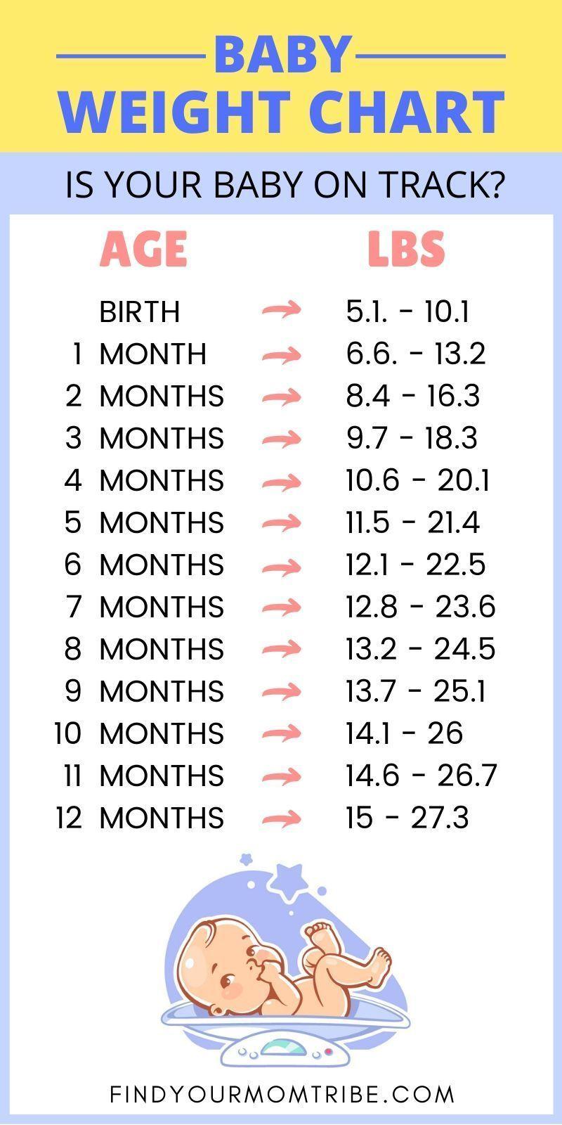 Pin On Baby Development