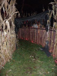 Plans Of Your Backyard Haunted Maze Google Search