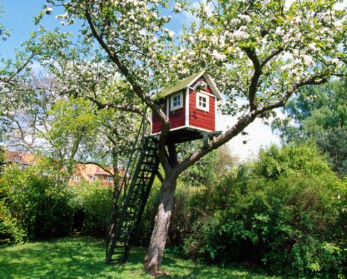 Treehouse: Building Tips- myblondeambitions.com