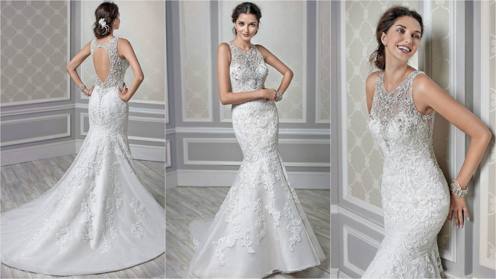 Backless Wedding Dresses Vera Wang | Wedding Dress | Pinterest ...